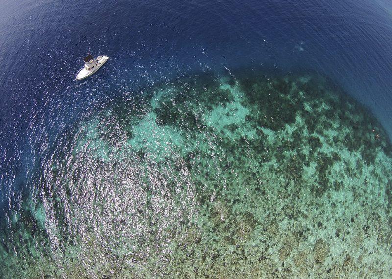cayo conceptos: mergulho em barreira de corais