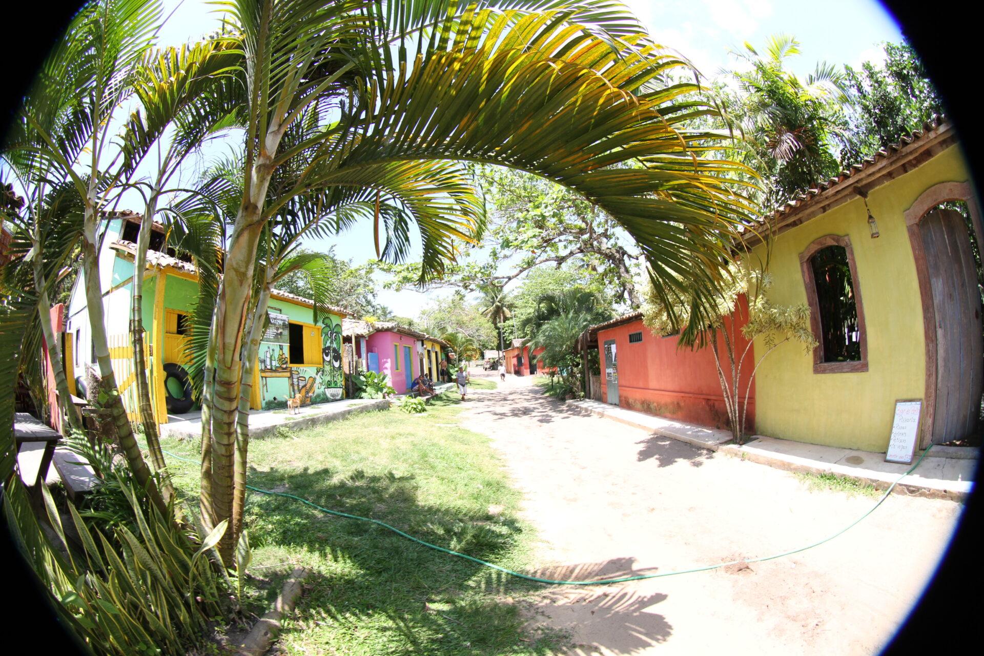 La vida en jamaica - 1 part 1