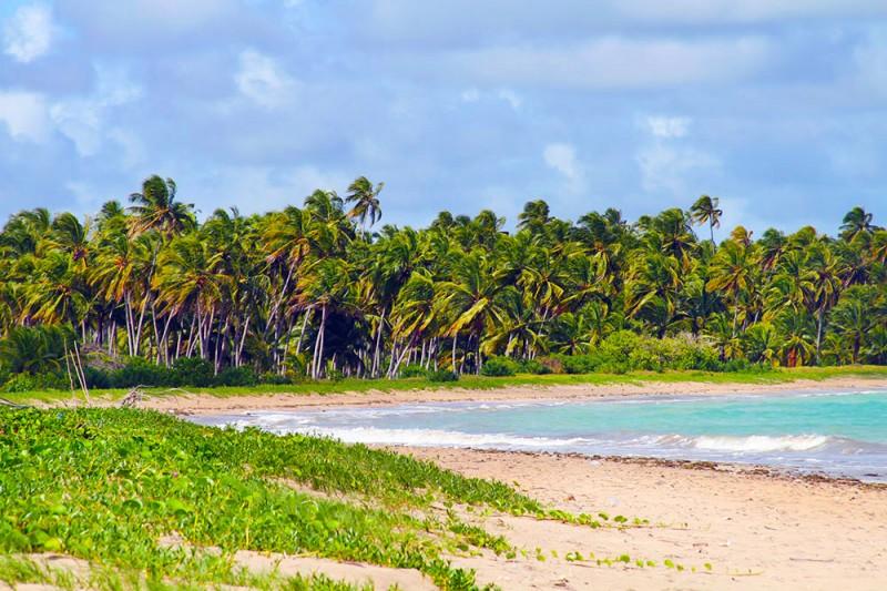Praia da Laje, do lado de Tatuamunha: tirei essa foto estando na frente da pousada Borapirá.