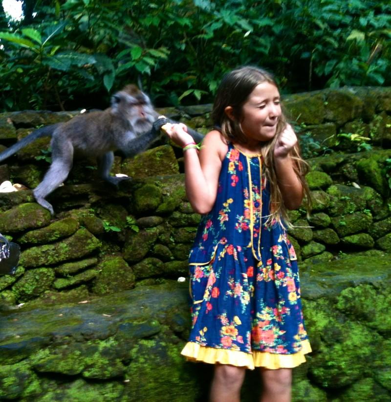 bali o que fazer ubud templo dos macacos