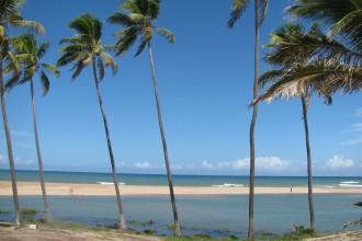 imbassai praia do forte