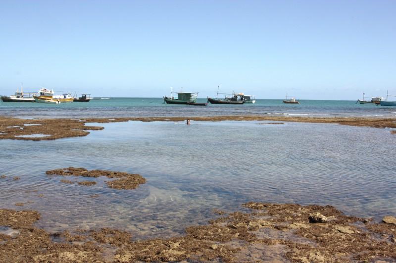 a praia em frente da vila na praia do Forte: aguas mornas