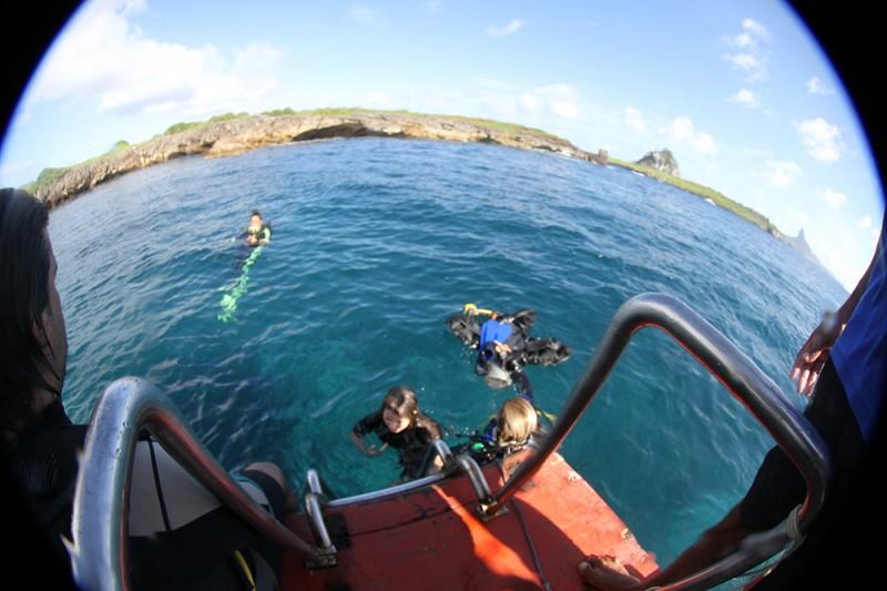 noronha divers mergulho tartaruga tubarao2