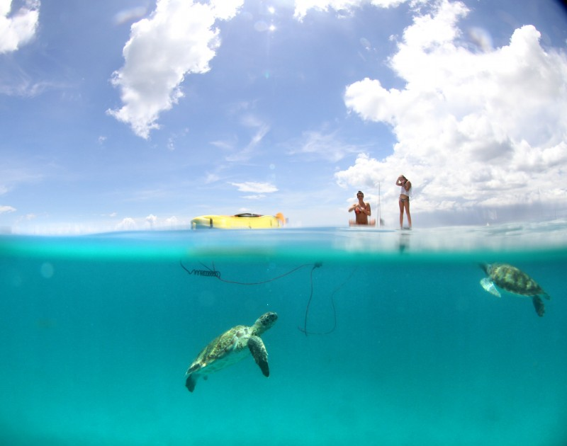 Peebles e Brownes mergulho