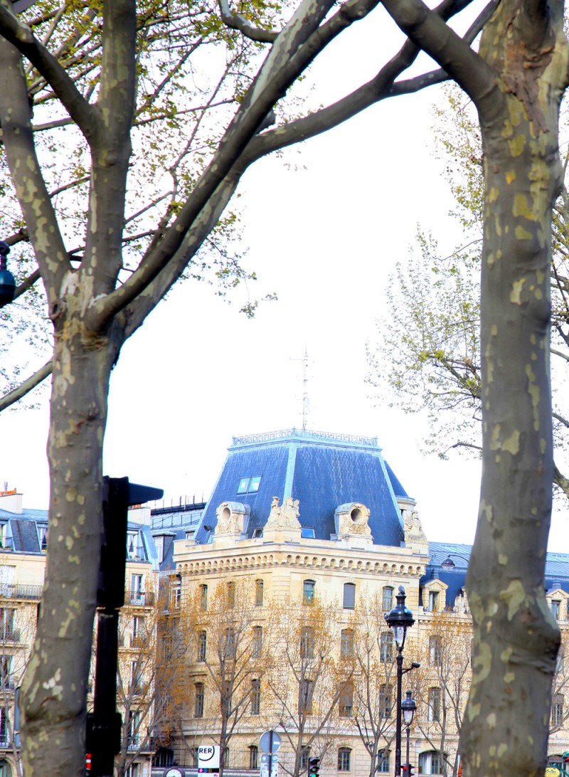 notre dame saint german des pres paris com crianças blog de viagem em familia juju na trip