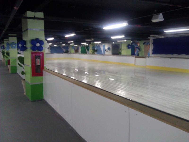 patinação 3 cópia