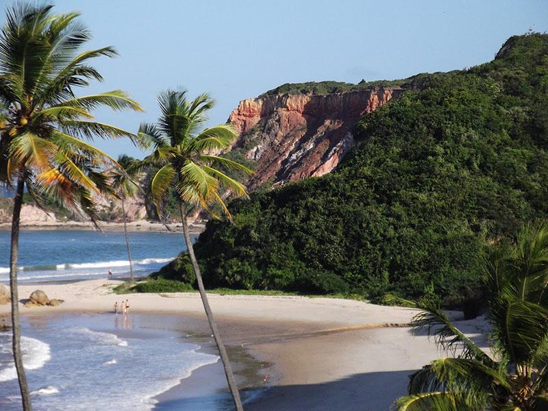 Coqueiros, falésias e uma paisagem linda em Tabatinga, mas uma das praias mais lindas do Norte e Nordeste