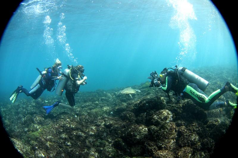 Nosos mergulho de batismo com o pessoal do Noronha Divers