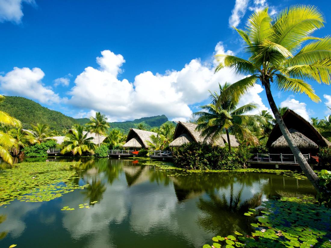 Dicas da Polinésia Francesa