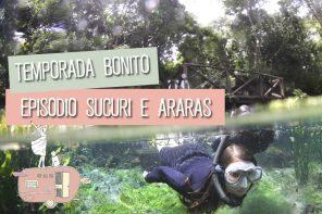 Websérie #Antesdos18: Temporada Bonito Ep. Sucuri