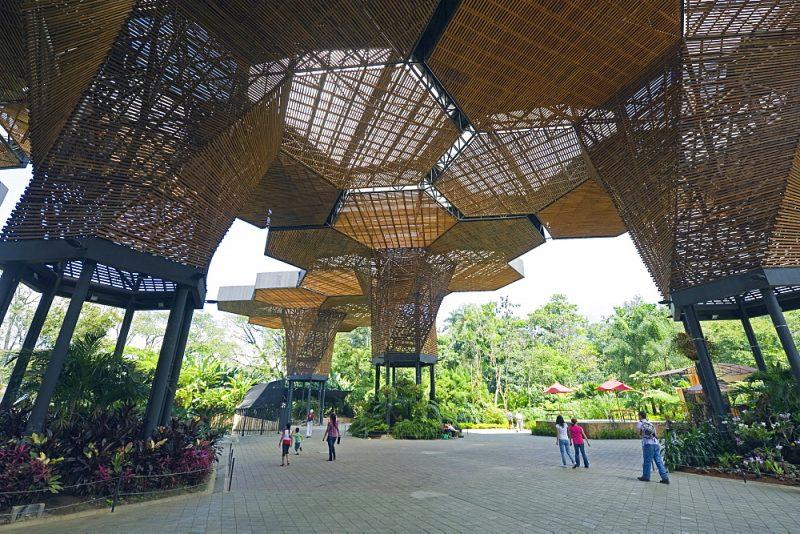 Jardin Botanico Joaquin Antonio Uribe em medellin: roteiro pela Colômbia