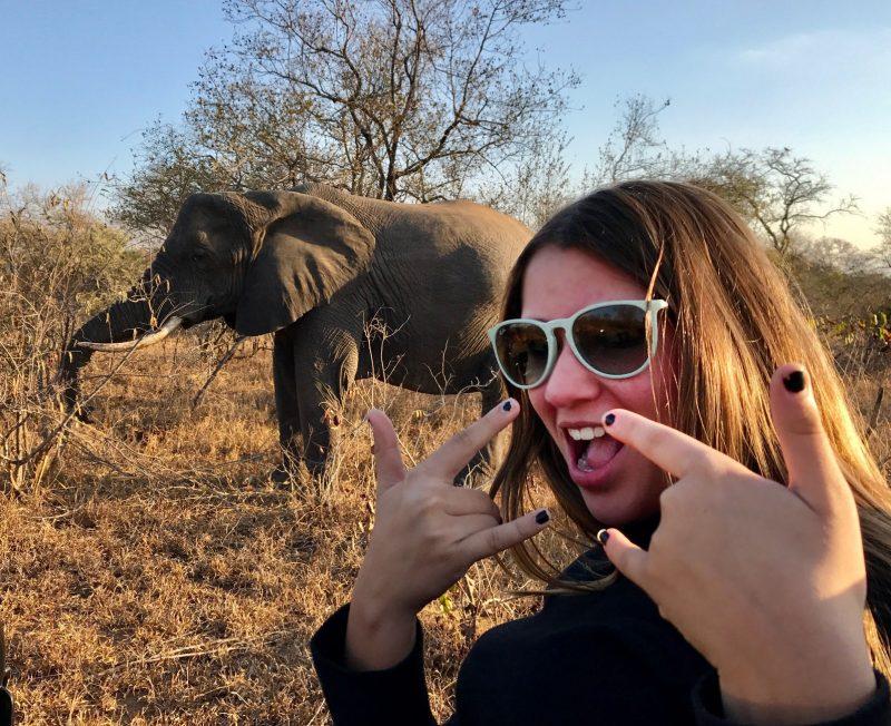 Dicas safari Africa e Kruger