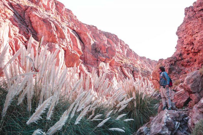 Termas Puritana Atacama