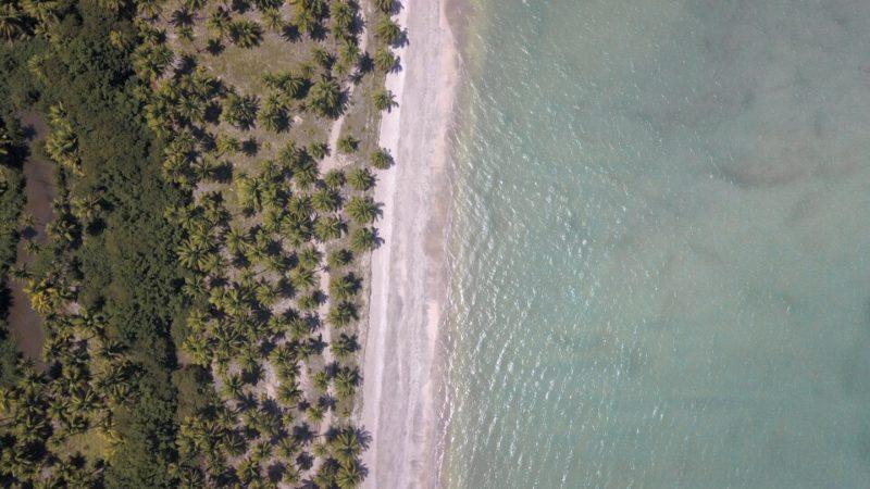 Rota Ecológica: praias só com coqueiros e mar azul, sem construções