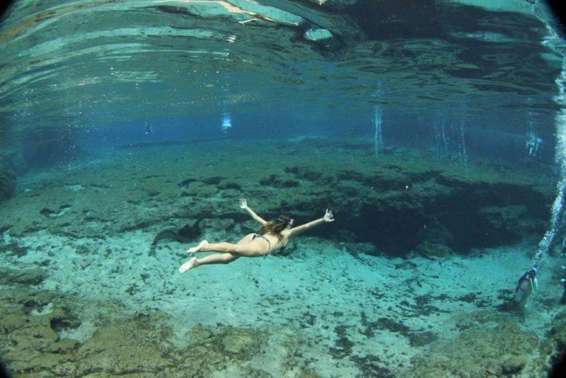 Debaixo d'água: visibilidade de Ginnie Springs