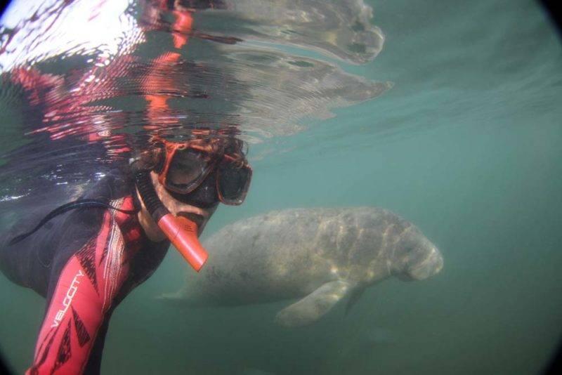 Nosso mergulho em Kings Bay