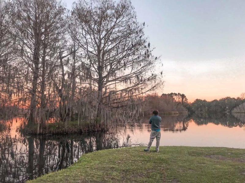 Lake Alice, em Gainesvillee: cenário da revoada. Um espetáculo lindo e diferente!!!