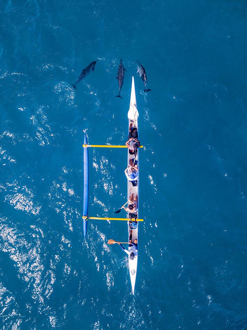 Golfinhos em Noronha: e na canoa havaiana