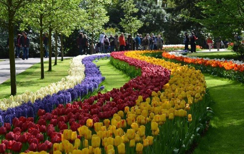 Destinos nacionais para ir em Setembro: Jardim de flores na Exploflora em Holambra.