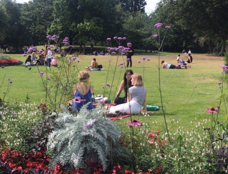 O Hyde Park no verão: toalhas e Picnic nos gramados