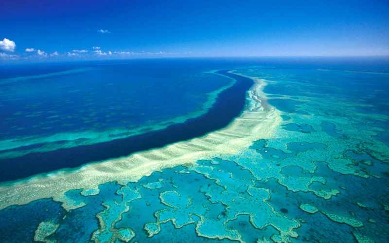 Barreira de Corais, em Queensland.