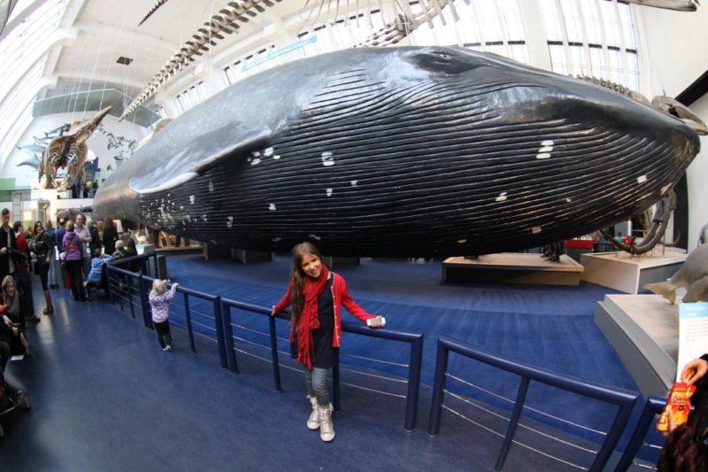As crianças adoram o Science Museum, em Londres.