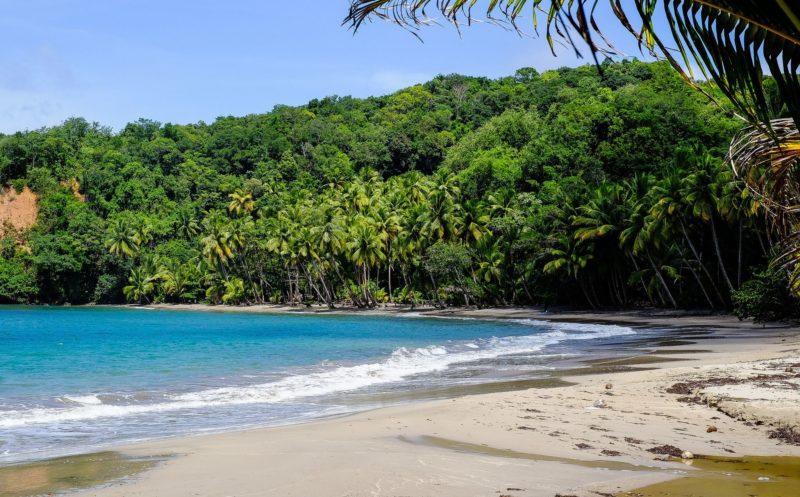 As praias de Dominica são assim, vazias e selvagens.