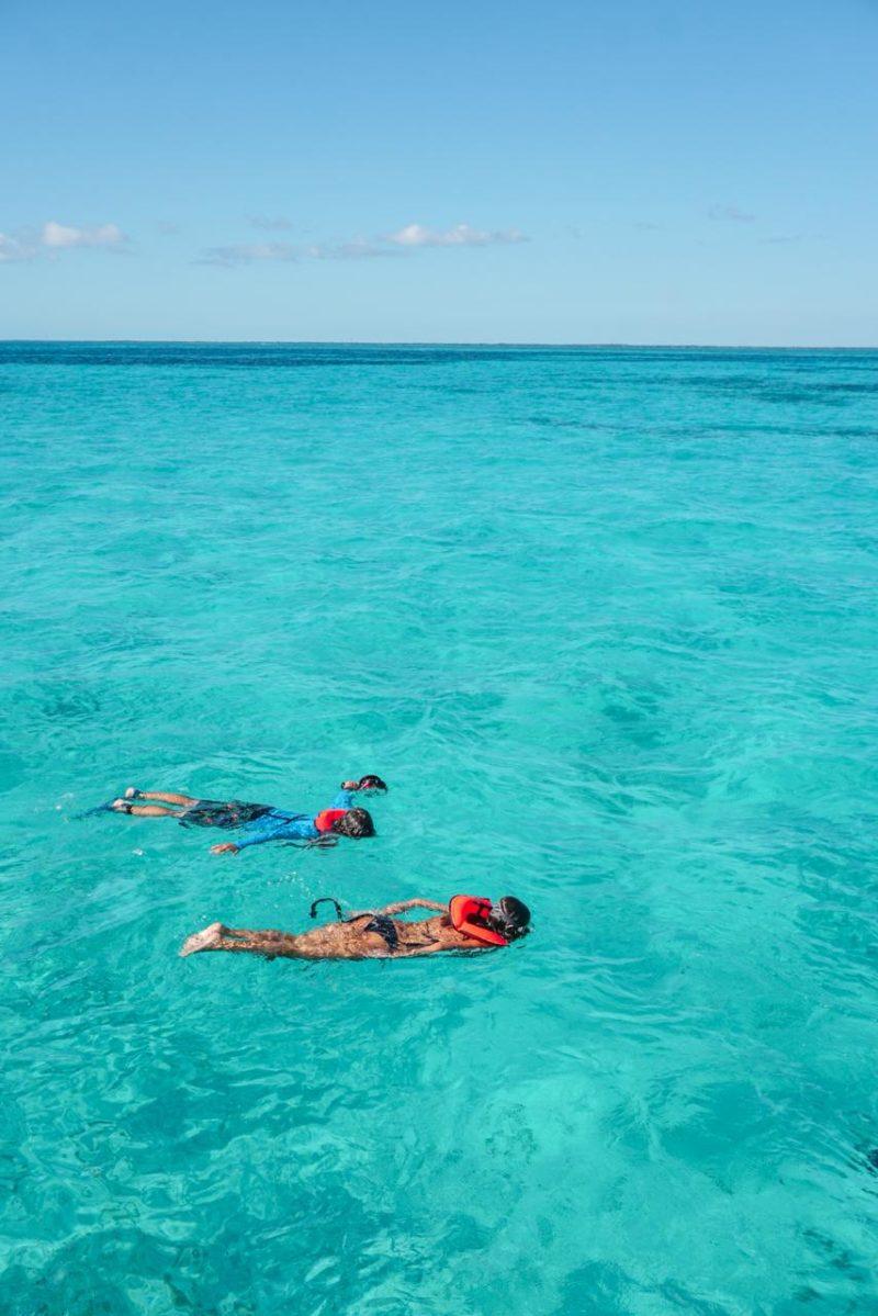 Roteiro Flórida: o incrível mar de John Pennekamp Coral Reef State, em Key Largo.