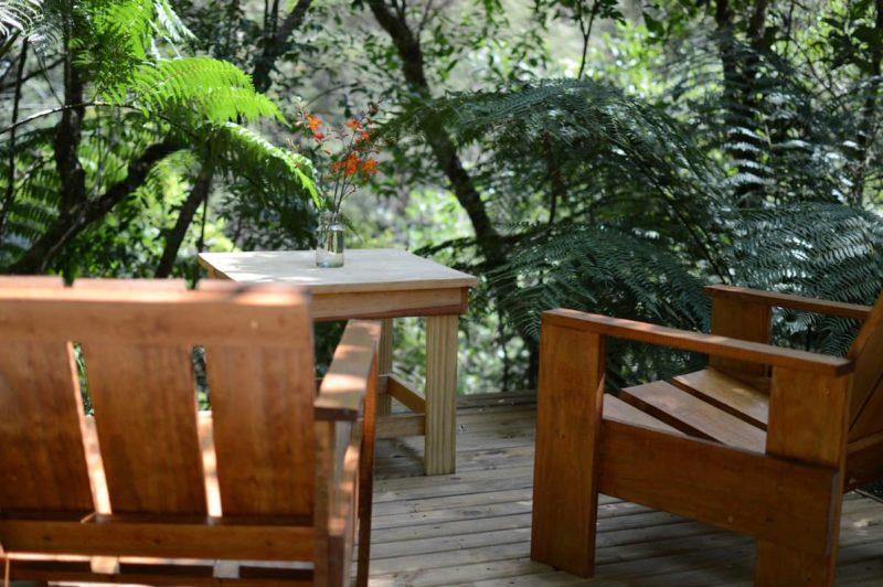 Casas mais desejadas Airbnb Brasil: desce em meio a natureza que cerca a Cabana de Vidro.