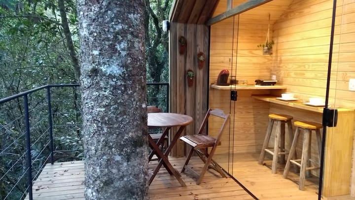 Cabana na árvore: o airbnb com a varanda nas alturas