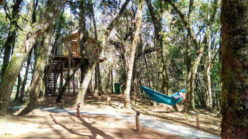 Casa na árvore Campos do Jordão: hospedagem diferente e confortável, na natureza e não distante do centro